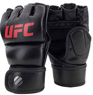 Everlast Train Advanced MMA 7-Ounce Training Gloves