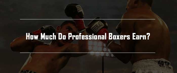 How Much Do Professional Boxers Earn